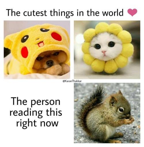 Cutest ever.jpg