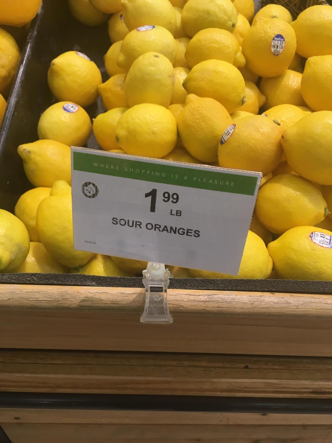 Sour Oranges.JPG